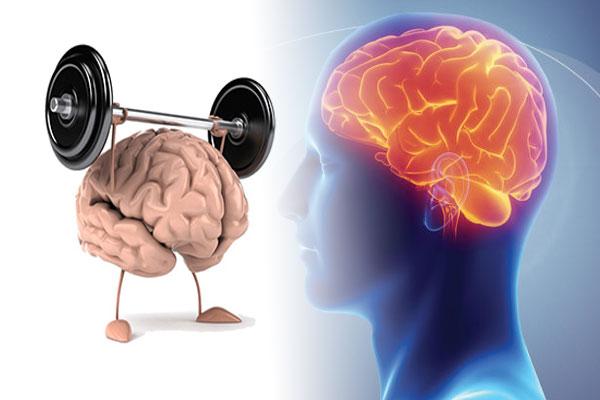Healthy and Happy Brain