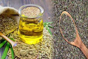 Hemp Cannabis Seeds