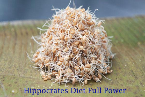 Hippocrates Diet