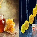 Manuka Honey Combats Antibiotic-resistant Infections