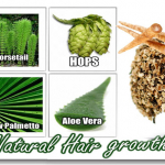 Natural Herbs For Quick Hair Growth