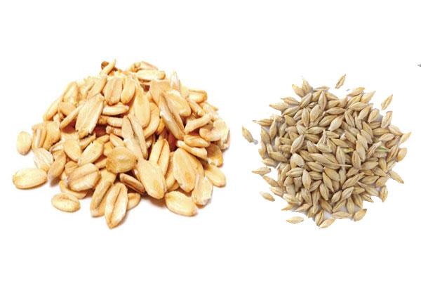 Oat and barley