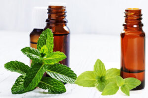 Peppermint Essential Oil Benefits: 8 Amazing Examples