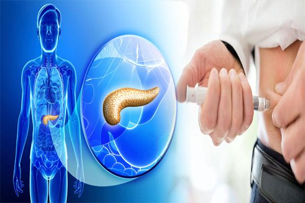 Regenerate the Pancreas
