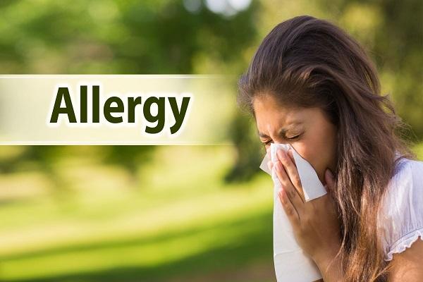 Spirulina helps allergic reactions