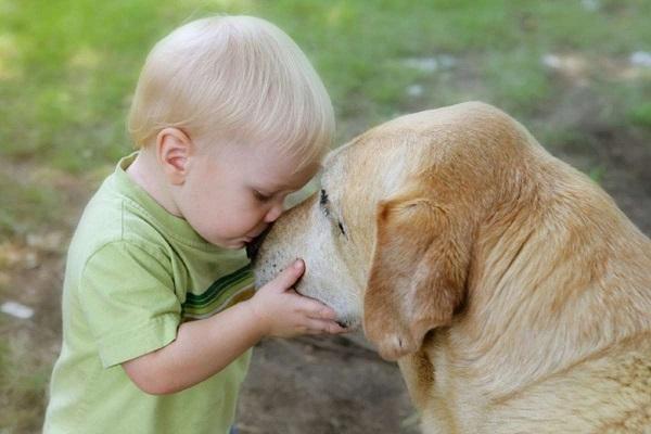 The pets make children kinder