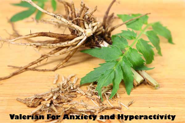 Valerian root for anxiety