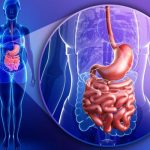 5 Reasonable Facts Why It Is Hard to Have a Healthy Gut in 2020