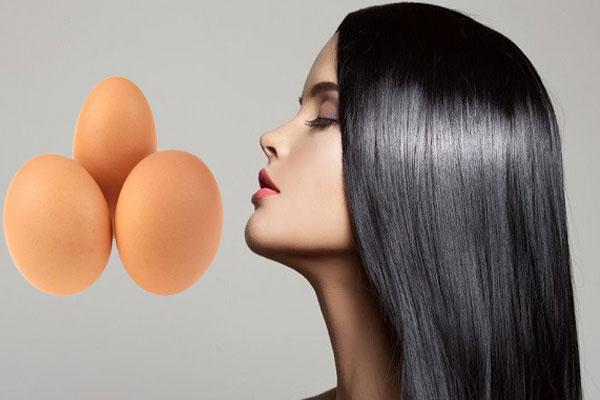 eggs for hair growth