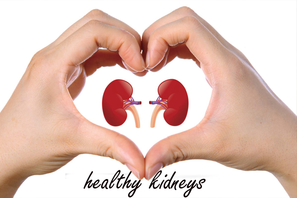 healthy kidneys